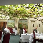 105 year old grapevine in dining room