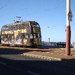 Trams run frequently and are cheap too !