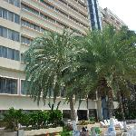Flamingo Beach Hotelの写真