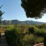  Alpilles