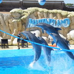 Marineland Majorca