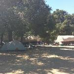 Foto Rancho Oso RV & Camping Resort