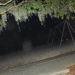 The haunted playground