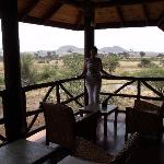 Foto Samburu Simba Lodge