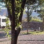 Foto de Riverside Oasis Campground & RV Park