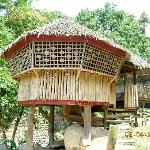 nipa hut for lunch in Mambukal Resort