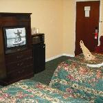 Billede af Econo Lodge and Suites North Syracuse