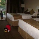 Hyatt Vineyard Creek Hotel and Spa resmi