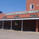 Auction Yard Cafe Highway 299 Alturas, CA
