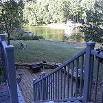 Foto van Blue Heron B&B on Lake Norman