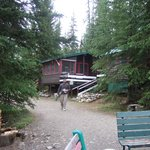 HI-Beauty Creek Wilderness Hostelの写真