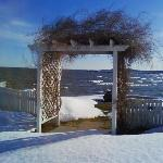  The wedding arbor in Winter... Sodus Point