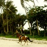 Boracay Horse Riding Stables