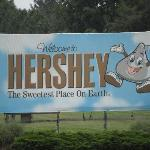  Best Value in Hershey