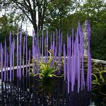  Dale Chihuly at Cheekwood Gardens.