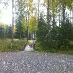 Black Bear Bed & Breakfast Foto