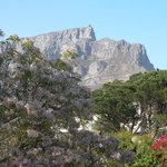  View from my room on Table Mountain. What a great view to wake up to.