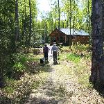  Walking to the cabin
