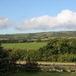 Sunny view over Brenscombe Hill