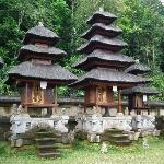 Wayan Ariana Experience Bali Driver - Private Day Tours
