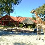 Foto van Epako Game Lodge