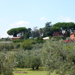 Agriturismo La Selvotta