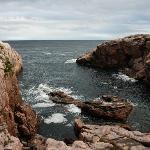  Jack Pine Trail / Cape Breton Highalnds National Park