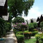 Photo of Shangri-La Bungalows