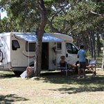 Camping Planik