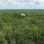  Ruinen in Calakmul