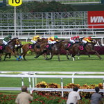Singapore Turf Club