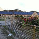  The cottages as seen from the working part of the farm.