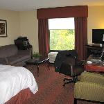 Hampton Inn Rochester Webster resmi