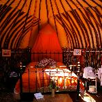 Chestnut Tree Yurt