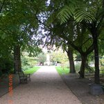 Chelsea Physic Garden