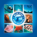 Blue Dive Port Douglas - Outer reef diving