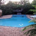 Dinkwe Guest House / Outdoor pool for Leopard Suite only