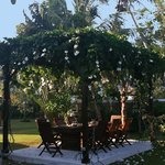 Romantic pergola for breakfast and more