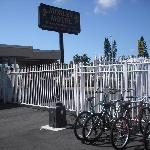  Gates / Bike Rack