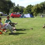 Blenheim Bridge Top 10 Holiday Park