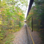 Foto de Blue Ridge Scenic Railway