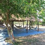  hammock area - where you can relax and watch birds