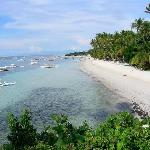Bilde fra Alona Tropical Beach Resort