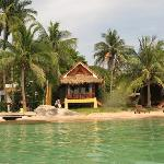 Foto de Palm Leaf Resort