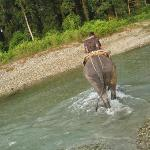 Crossing the river on an Elephant!