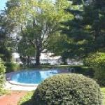  Waterside pool of Bay Cottage -relax in the refershing water and enjoy the views