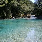 Queenstown Fishing Rental & Tours - Private Trips