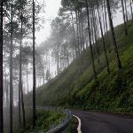 On the road to misty mountains