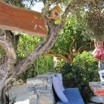 A nice cozy corner, under an olive tree