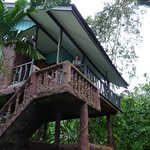 Foto Tree Top River Hut